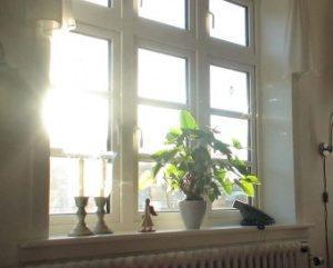 Свет в окно